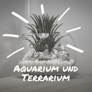 Aquarium und Terrarium