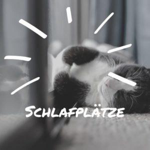 Katzenschlafplätze